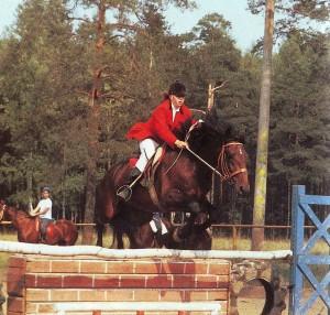 Девочка на лошади